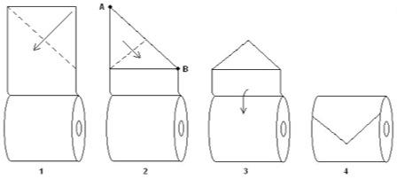 Origami de Papel Higiênico 01